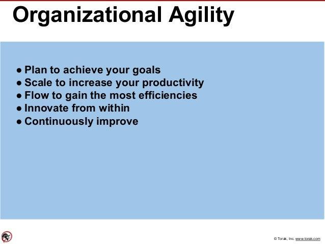 © Torak, Inc. www.torak.com Organizational Agility ● Plan to achieve your goals ● Scale to increase your productivity ● Fl...