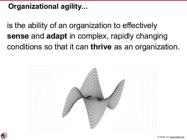 © Torak, Inc. www.torak.com Organizational agility... is the ability of an organization to effectively sense and adapt in ...