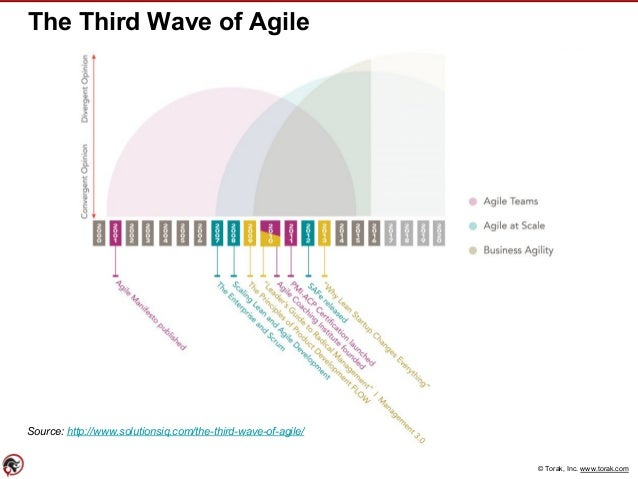 © Torak, Inc. www.torak.com The Third Wave of Agile Source: http://www.solutionsiq.com/the-third-wave-of-agile/