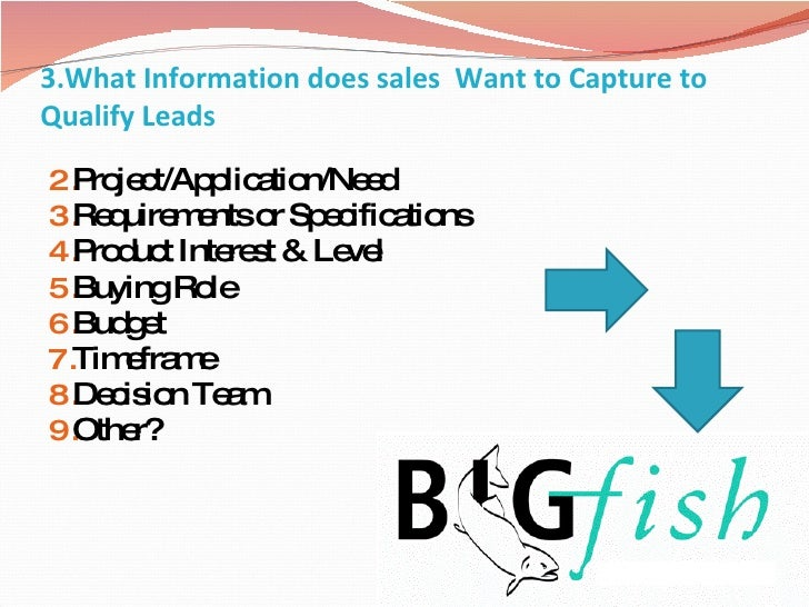 3.What Information does sales  Want to Capture to Qualify Leads <ul><li>Project/Application/Need  </li></ul><ul><li>Requir...