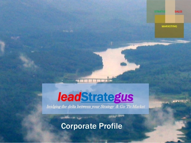 leadStrategus bridging the delta between your Strategy & Go To Market Corporate Profile