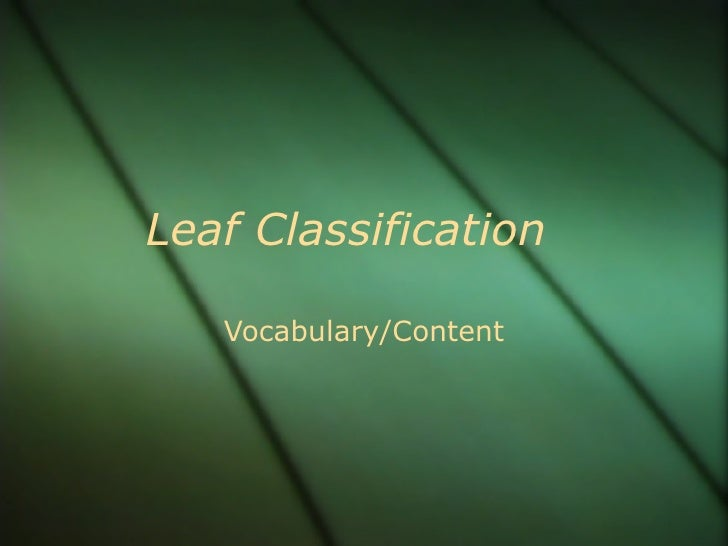 Leaf Classification Vocabulary/Content