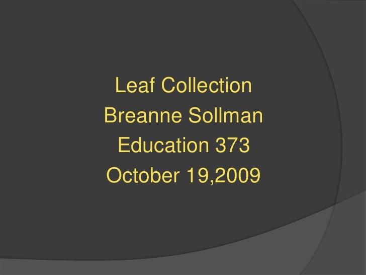 Leaf Collection<br />Breanne Sollman<br />Education 373<br />October 19,2009<br />