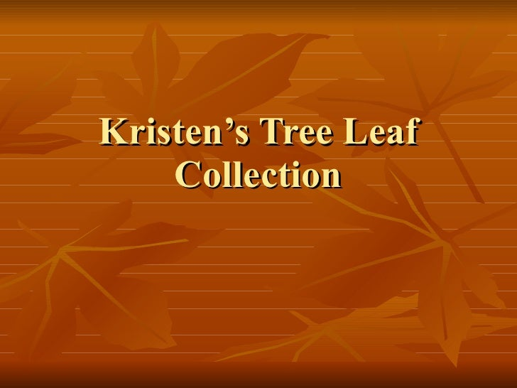 Kristen's Tree Leaf Collection