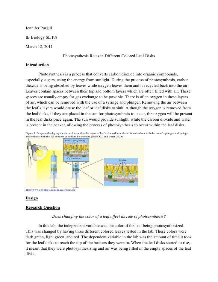 photosynthesis chromatography lab