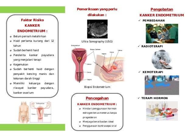 Leaflet kanker endometrium