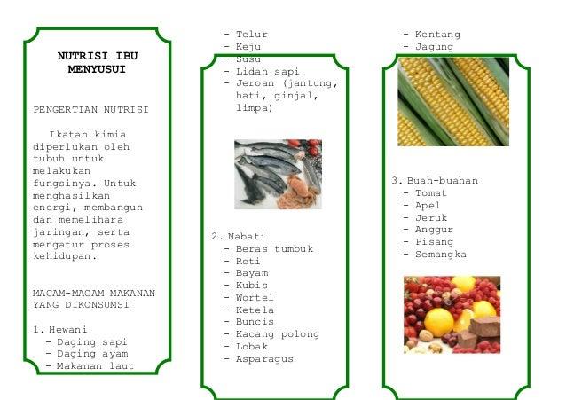 NUTRISI IBU MENYUSUI PENGERTIAN NUTRISI Ikatan kimia diperlukan oleh tubuh untuk melakukan fungsinya. Untuk menghasilkan e...