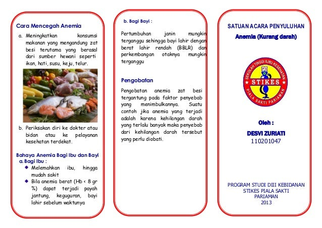 Search Results For: contoh leaflet buah dan sayur