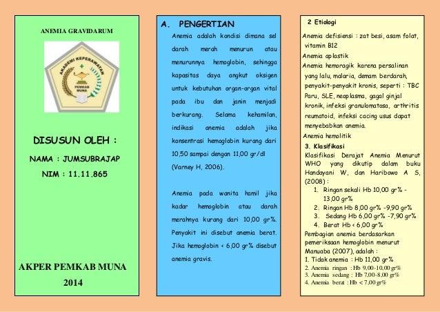 Leaflet Anemia Gravidarum