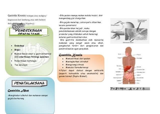 Leaflet gastritis akper muna 2