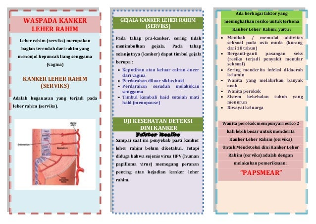 Diet yang Tepat untuk Mengobati Tuberkulosis (TBC)