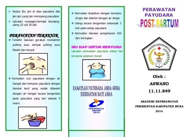 Leaflet Diet Ibu Hamil Lidiya