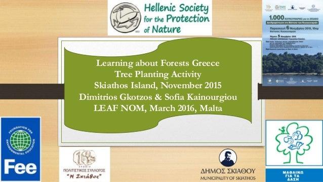 Learning about Forests Greece Tree Planting Activity Skiathos Island, November 2015 Dimitrios Gkotzos & Sofia Kainourgiou ...
