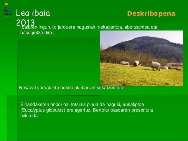 Lea ibaia2013DeskribapenaIbaiaren inguruko jarduera nagusiak: nekazaritza, abeltzaintza etabasogintza dira.Nekazal soroak ...