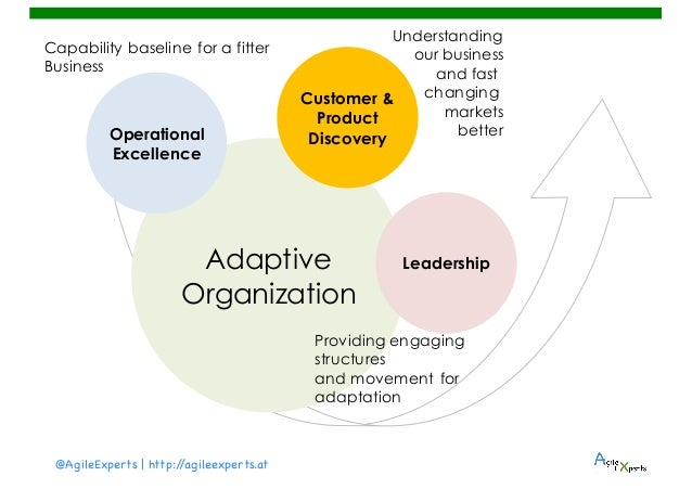 organization adaptation Characteristics of adaptation to organizational change were identified by  obtaining critical incidents of adaptation from 47 managers from four.