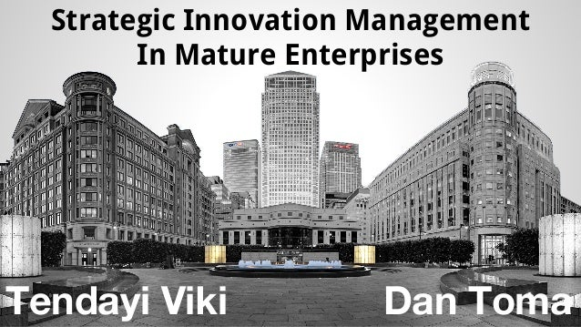 Strategic Innovation Management  In Mature Enterprises  Tendayi Viki Dan Toma
