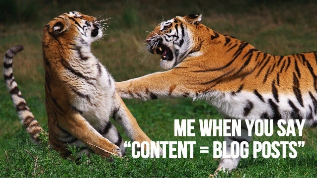"""Me When you say """"CONTENT = BLOG POSTS"""""""