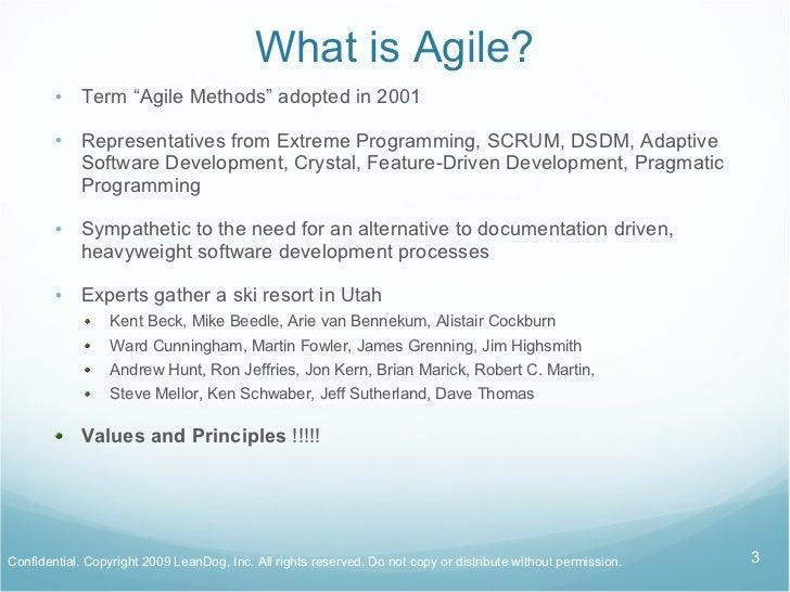 Agile Explained by LeanDog Slide 3