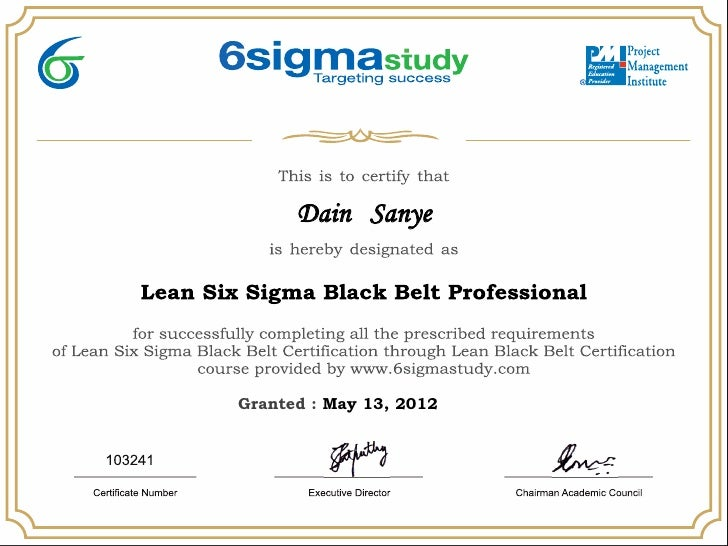 Lean six sigma black belt certificate dain sanye for Six sigma black belt certificate template
