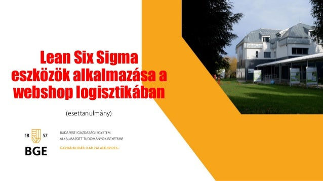 Lean Six Sigma eszközök alkalmazása a webshop logisztikában (esettanulmány)