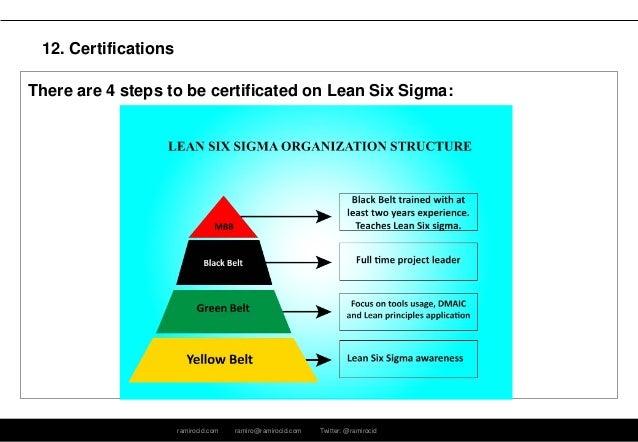 lean six sigma principles pdf