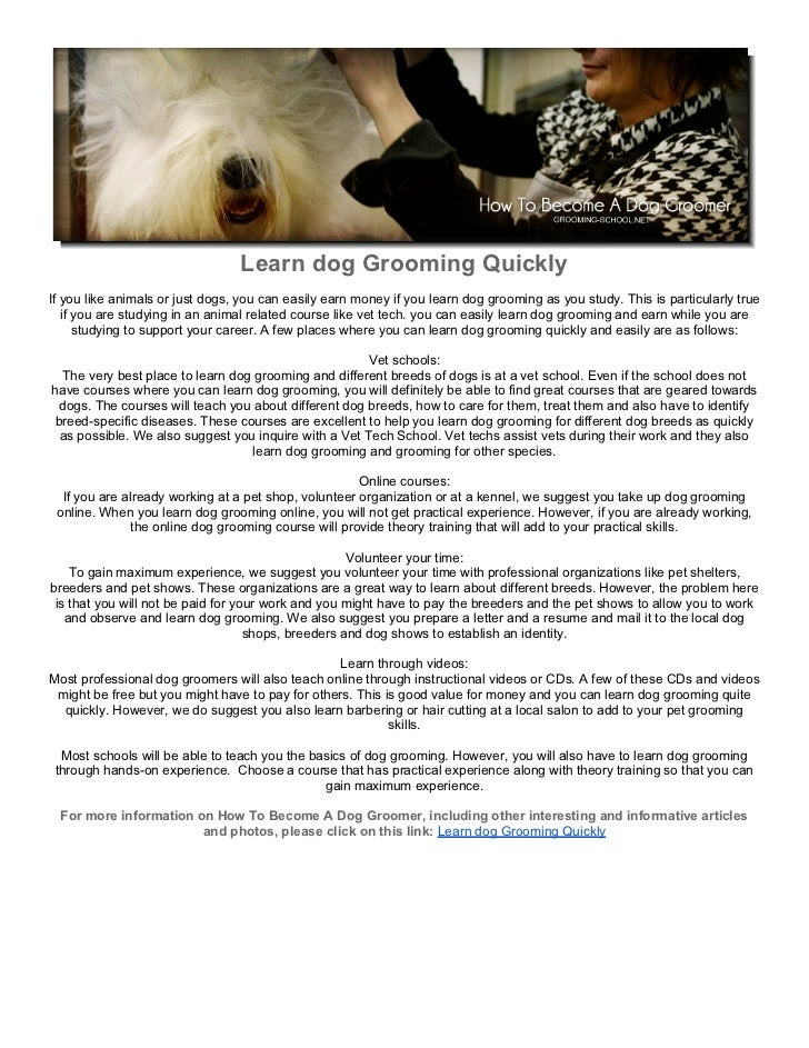 Learn Dog Grooming Quickly