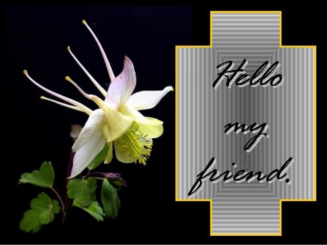HelloHello mymy friend.friend.