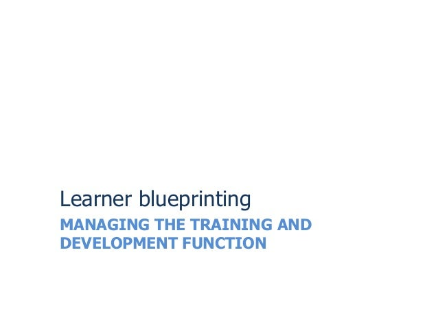 MANAGING THE TRAINING ANDDEVELOPMENT FUNCTIONLearner blueprinting