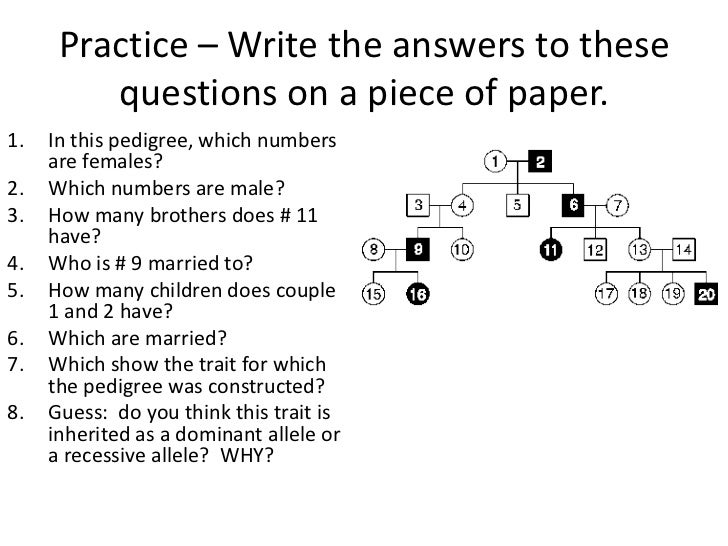 Genetics Practice Problems Pedigree Tables Worksheet ...