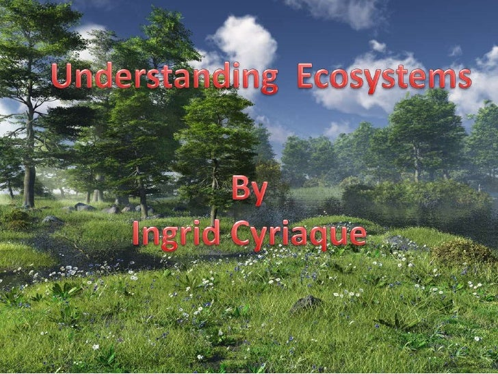 Understanding  Ecosystems<br />By<br />Ingrid Cyriaque<br />