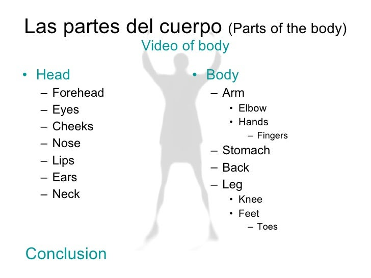 How to learn body parts in spanish