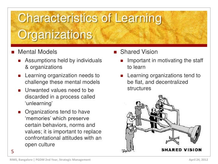 advantages and disadvantages of learning organization pdf