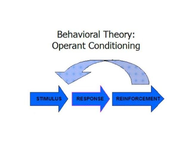 characteristics of learning process pdf