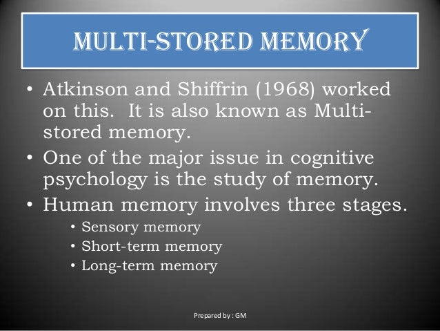 theories and stages of memory The relationship between attention and working  information in working memory this suggests that theories should  amongst distinct processing stages in wm and.