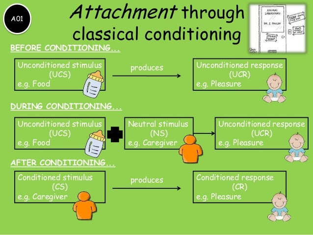 addictions and phobias through classical and Phobias and addictions are two emotional situations that have in one way  phobias are developed through the classical and operant conditioning stages.