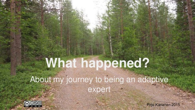 What happened? About my journey to being an adaptive expert Pirjo Kananen 2015
