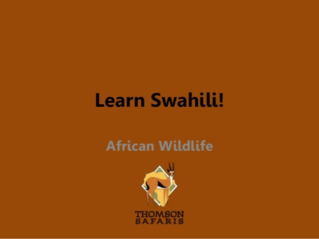 Learn Swahili! African Wildlife