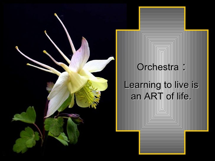 Orchestra  : Learning to live is an ART of life.