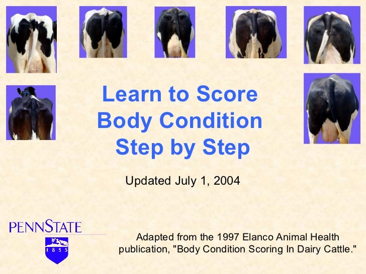 Learn to ScoreBody Condition Step by Step  Updated July 1, 2004    Adapted from the 1997 Elanco Animal Health publication,...