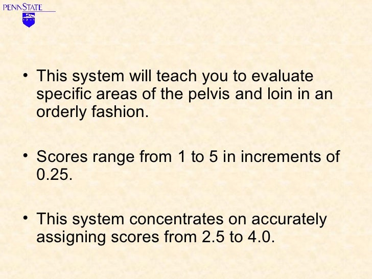 Learn to Score Body Condition for Dairy Cows Slide 3