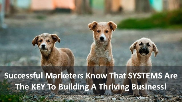 Successful Marketers Know That SYSTEMS Are The KEY To Building A Thriving Business!