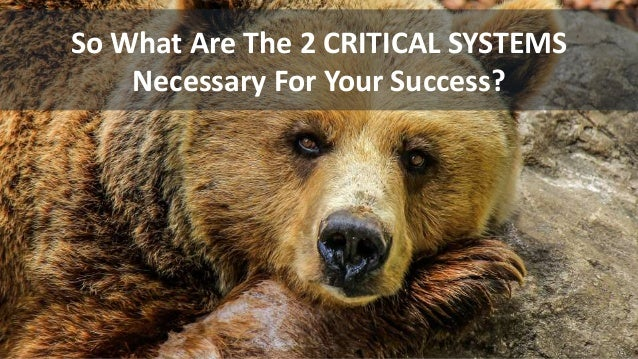 So What Are The 2 CRITICAL SYSTEMS Necessary For Your Success?