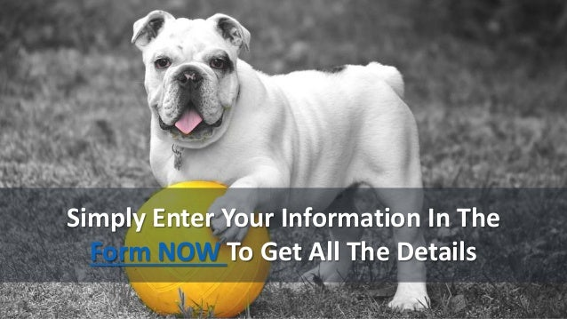 Simply Enter Your Information In The Form NOW To Get All The Details