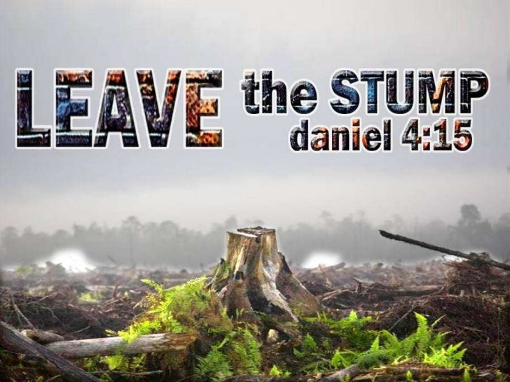 Leave the Stump
