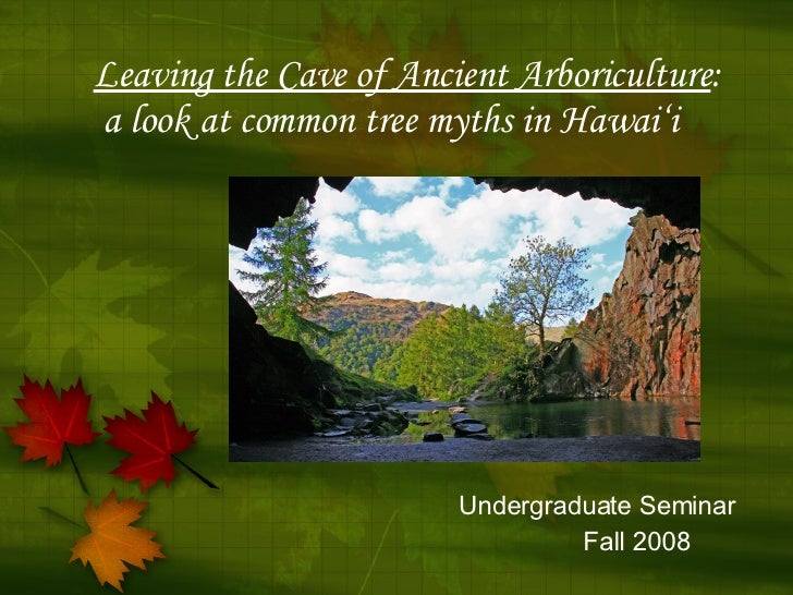Leaving the Cave of Ancient Arboriculture :    a look at common tree myths in Hawai'i Undergraduate Seminar Fall 2008