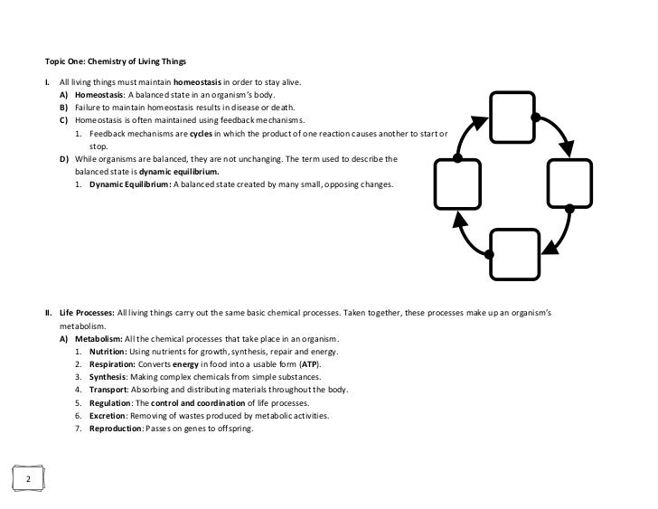 Biology dunleavy regents review revision ccuart Choice Image