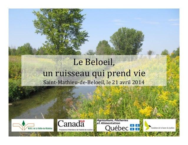 Le Beloeil, un ruisseau qui prend vie Saint-Mathieu-de-Beloeil, le 21 avril 2014