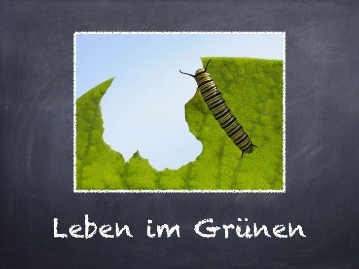 Leben im Grünen
