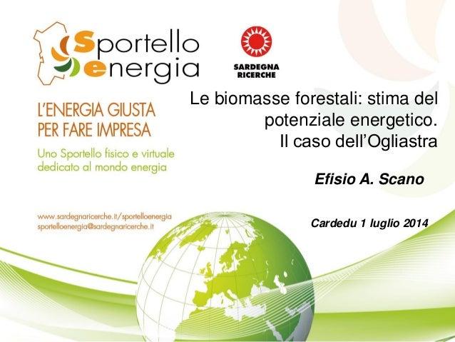 Le biomasse forestali: stima del potenziale energetico. Il caso dell'Ogliastra Efisio A. Scano Cardedu 1 luglio 2014