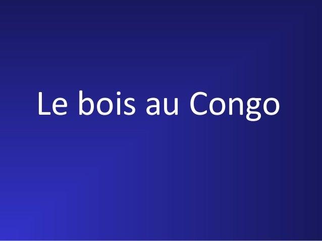 Le bois au Congo